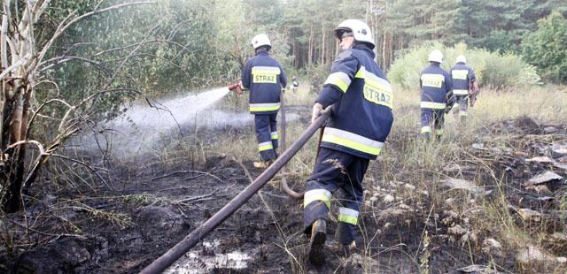 informacje kołobrzeg, pożar,las